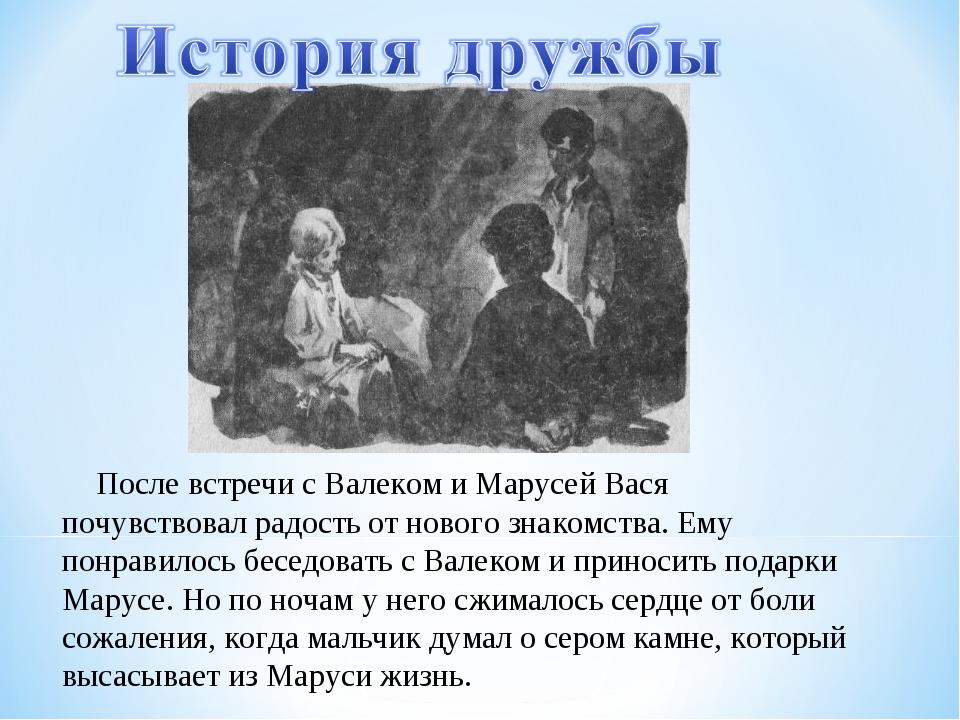 После встречи с Валеком и Марусей Вася почувствовал радость от нового знаком...