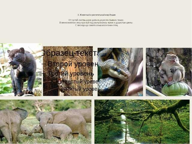 3. Животный и растительный мир Индии От густой листвы даже днём в джунглях б...