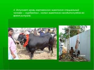 4. Испускает кровь жертвенного животного специальный человек – «курбанджи», х