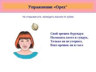 """Упражнение «Орех"""" Не открывая рта, проводить языком по зубам Свой орешек бур"""