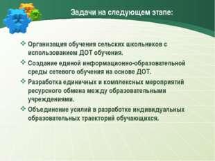 Задачи на следующем этапе: Организация обучения сельских школьников с использ