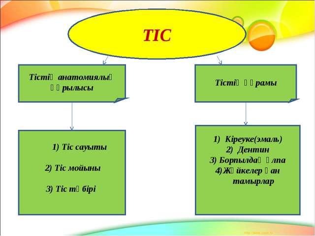 ТІС Тістің анатомиялық құрылысы Тістің құрамы 1) Тіс сауыты 2) Тіс мойыны 3)...