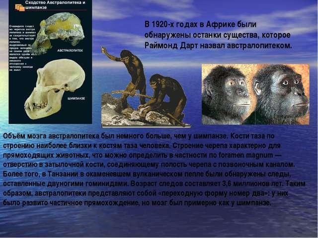В 1920-х годах в Африке были обнаружены останки существа, которое Раймонд Дар...