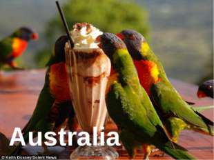 Australia Australia is a bright multicultural country with different national