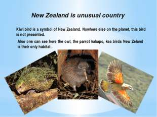 One of the main characteristical features of New Zealand is its carefully pre