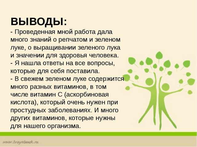 ВЫВОДЫ: - Проведенная мной работа дала много знаний о репчатом и зеленом лук...