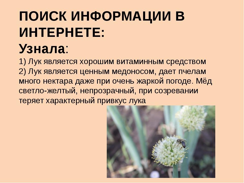 ПОИСК ИНФОРМАЦИИ В ИНТЕРНЕТЕ: Узнала: 1) Лук является хорошим витаминным сред...