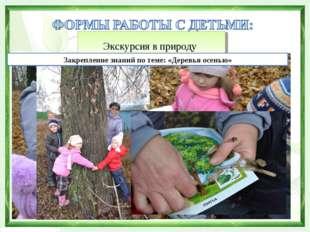 Экскурсия в природу Закрепление знаний по теме: «Деревья осенью»