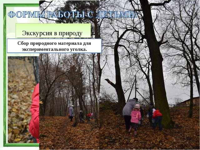 Экскурсия в природу Сбор природного материала для экспериментального уголка.