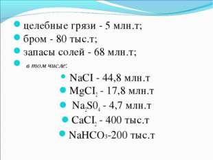 целебные грязи - 5 млн.т; бром - 80 тыс.т; запасы солей - 68 млн.т; в том чис