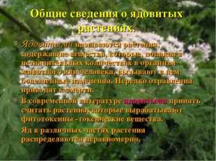 Общие сведения о ядовитых растениях. Ядовитыми называются растения, содержащи