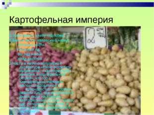 Картофельная империя 1. Картофель- хлебу подпорка. 2.Белые кисти- напрасный н