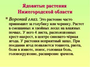 Ядовитые растения Нижегородской области Вороний глаз. Это растение часто прин