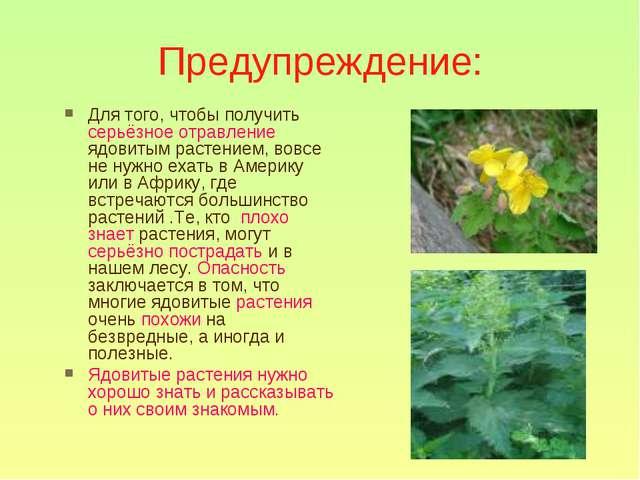 Предупреждение: Для того, чтобы получить серьёзное отравление ядовитым растен...