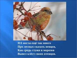 Я б могла ещё так много Про лесных сказать певцов, Как средь стужи и морозов