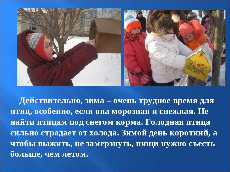 Действительно, зима – очень трудное время для птиц, особенно, если она мороз...