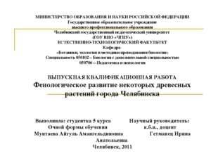 МИНИСТЕРСТВО ОБРАЗОВАНИЯ И НАУКИ РОССИЙСКОЙ ФЕДЕРАЦИИ Государственное образов