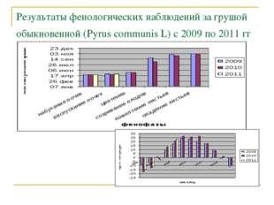 Результаты фенологических наблюдений за грушой обыкновенной (Pyrus communis L