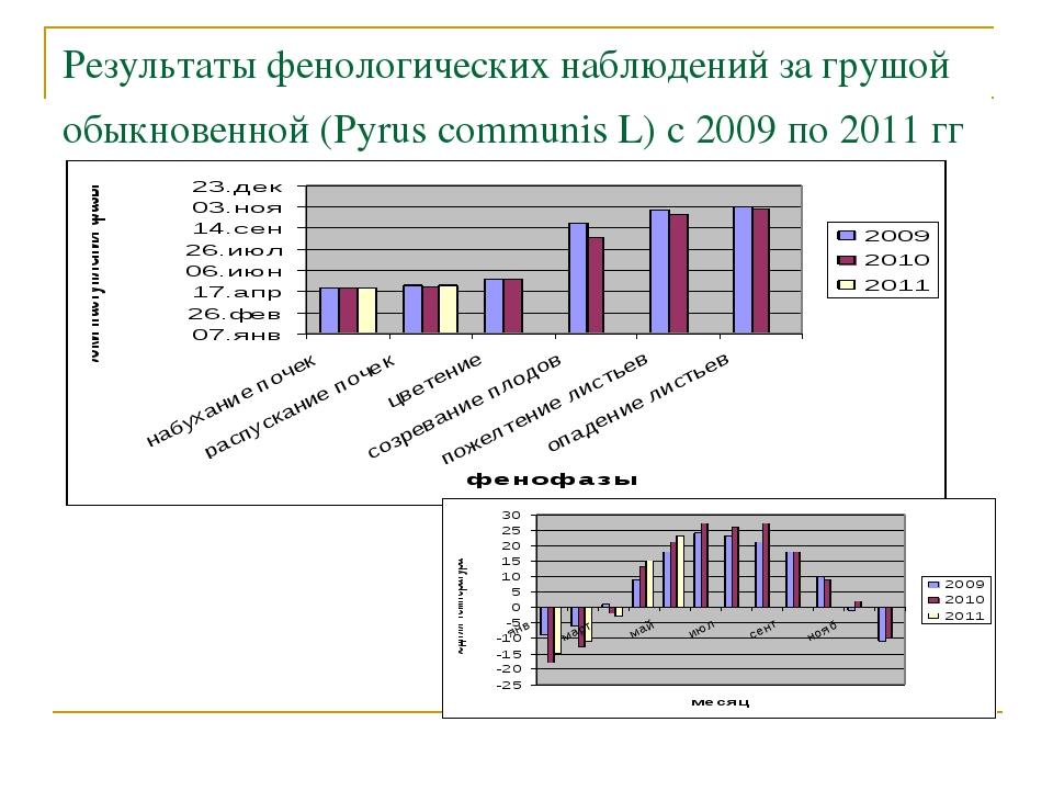 Результаты фенологических наблюдений за грушой обыкновенной (Pyrus communis L...