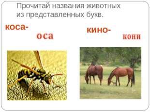 Прочитай названия животных из представленных букв. коса- кино-