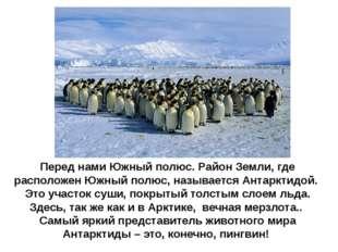 Перед нами Южный полюс. Район Земли, где расположен Южный полюс, называется А
