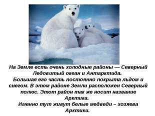 НаЗемле есть очень холодные районы— Северный Ледовитый океан иАнтарктида.
