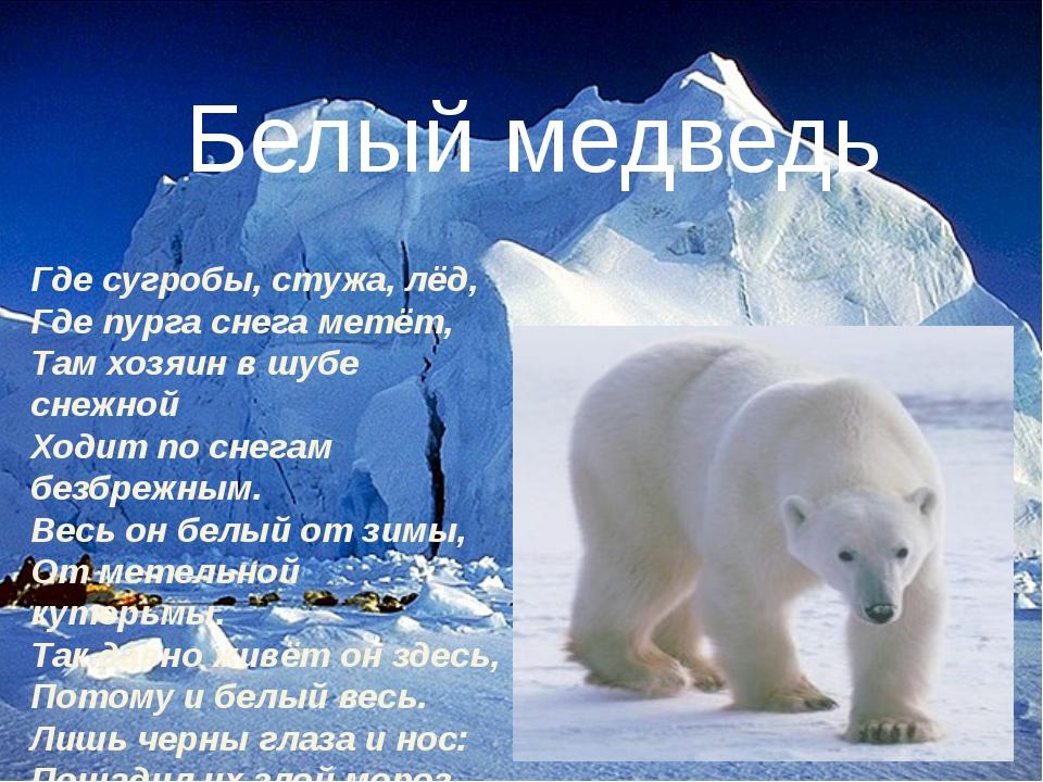 Где сугробы, стужа, лёд, Где пурга снега метёт, Там хозяин в шубе снежной Ход...