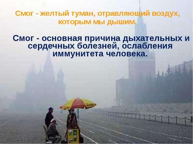 Смог - желтый туман, отравляющий воздух, которым мы дышим. Смог - основная п...