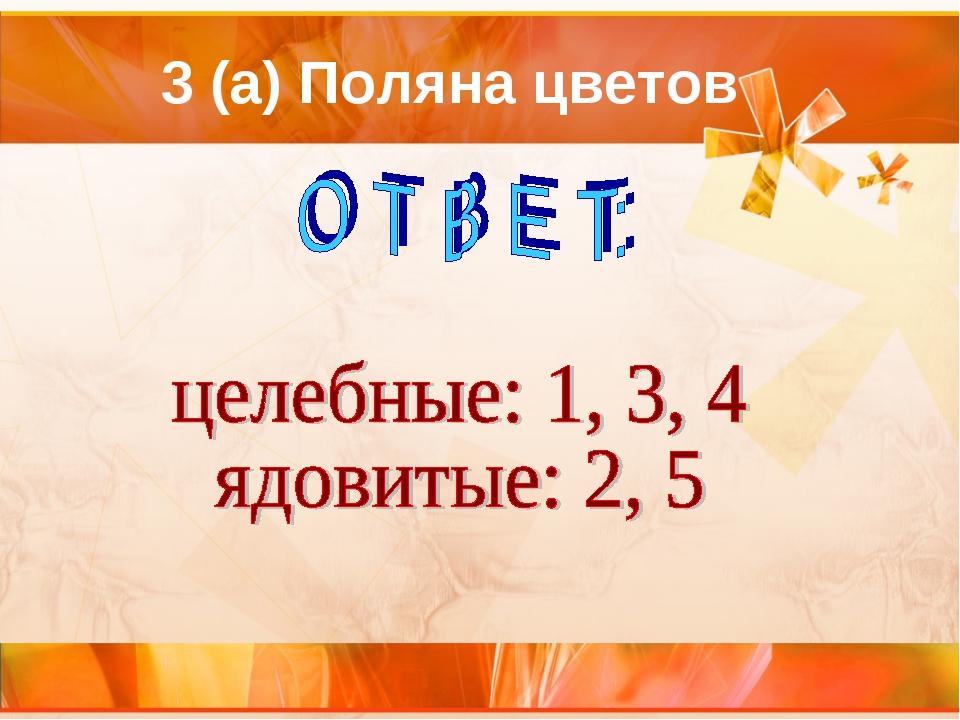 3 (а) Поляна цветов