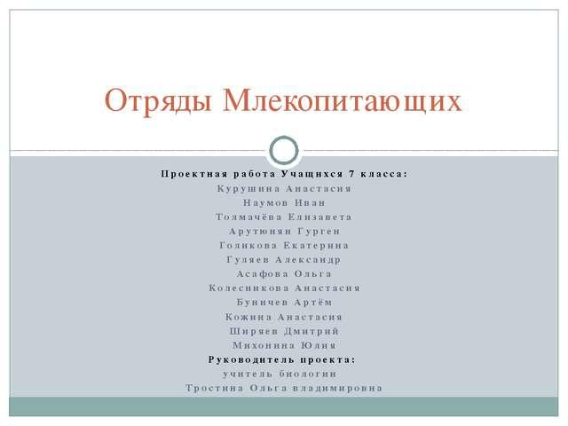 Проектная работа Учащихся 7 класса: Курушина Анастасия Наумов Иван Толмачёва...