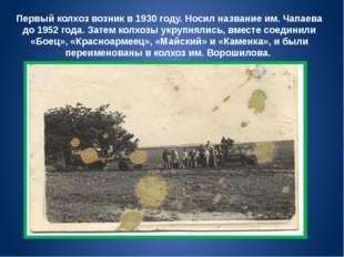 Первый колхоз возник в 1930 году. Носил название им. Чапаева до 1952 года. За