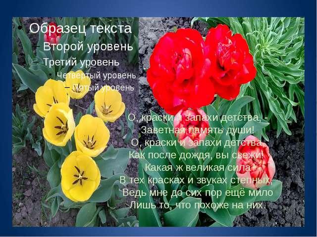 О, краски и запахи детства, - Заветная память души! О, краски и запахи детств...