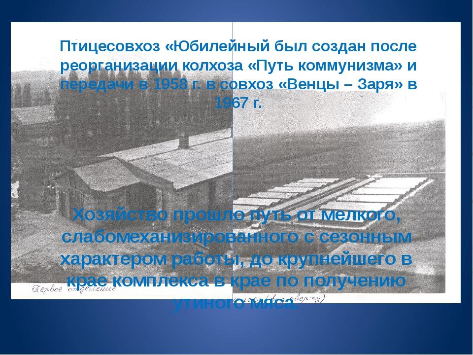 Птицесовхоз «Юбилейный был создан после реорганизации колхоза «Путь коммунизм...
