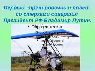 Первый тренировочный полёт со стерхами совершил Президент РФ Владимир Путин.