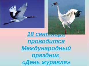 18 сентября проводится Международный праздник «День журавля»