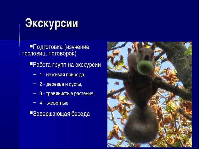 Экскурсии Подготовка (изучение пословиц, поговорок) Работа групп на экскурсии...