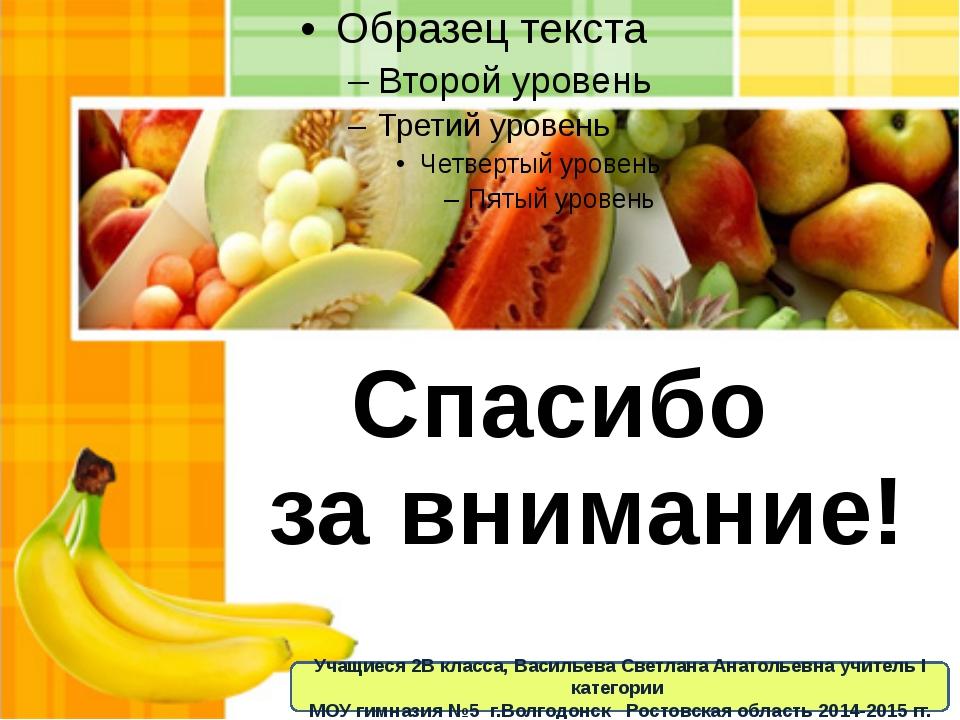 Спасибо за внимание! Учащиеся 2В класса, Васильева Светлана Анатольевна учите...