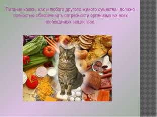 Питание кошки, как и любого другого живого существа, должно полностью обеспеч