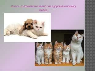 Кошки положительно влияют на здоровье и психику людей.