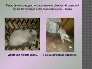 Мною было проведено исследование особенностей сиамской кошки. На примере моей
