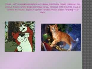 Кошка на Руси характеризовалась постоянным появлением примет, связанных с ее