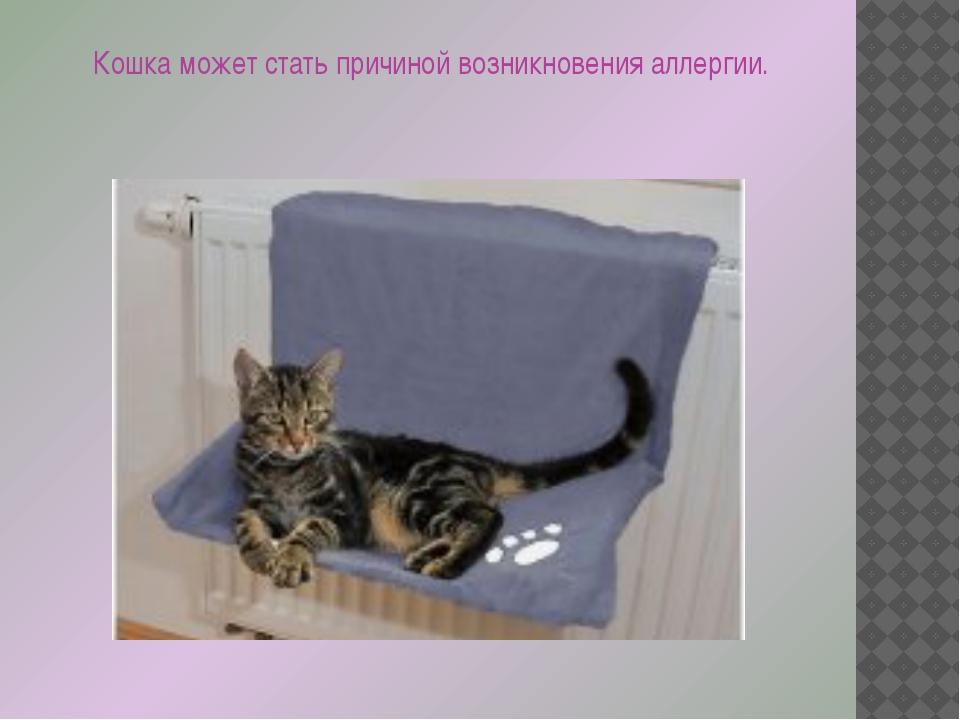 Кошка может стать причиной возникновения аллергии.