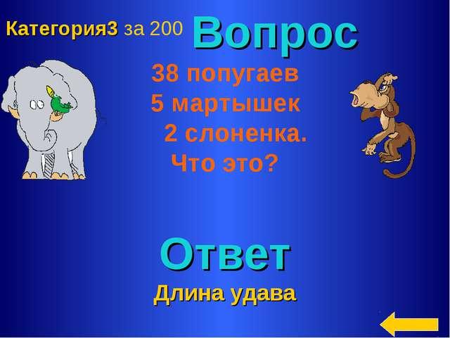 Вопрос 38 попугаев 5 мартышек 2 слоненка. Что это? Ответ Длина удава Категор...
