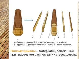 Пиломатериалы Пиломатериалы – материалы, полученные при продольном распиливан