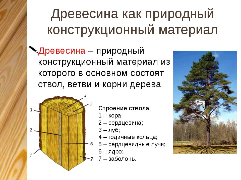 Древесина как природный конструкционный материал Древесина – природный констр...