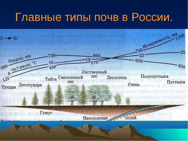 Главные типы почв в России.