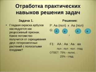 Отработка практических навыков решения задач Задача 1. Гладкая окраска арбузо
