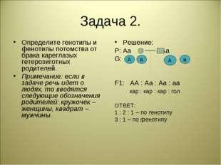 Задача 2. Определите генотипы и фенотипы потомства от брака кареглазых гетеро