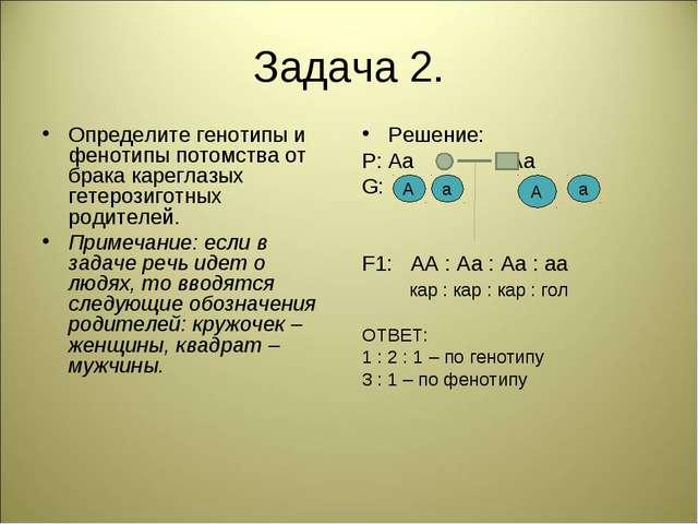 Задача 2. Определите генотипы и фенотипы потомства от брака кареглазых гетеро...