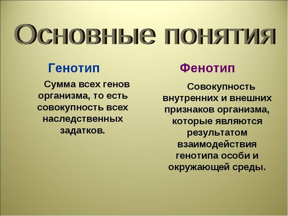 Генотип Фенотип Сумма всех генов организма, то есть совокупность всех наследс...